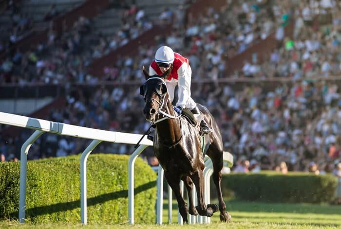 TwinSpires California Review